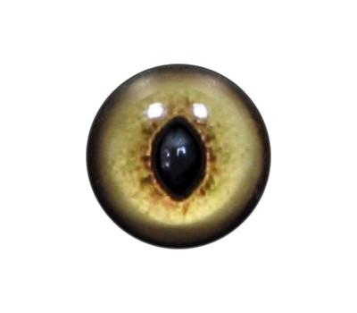 Cat Eyes KK40