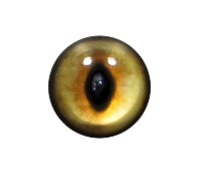 Cat Eyes KK5