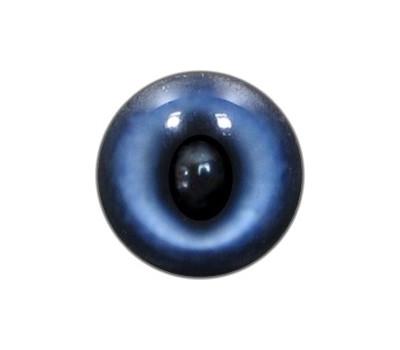Kitten Eyes 3 (No White)